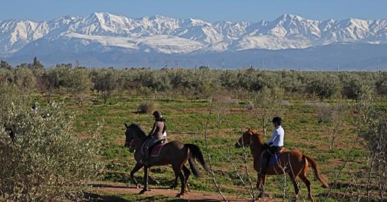 Marrakech avec des enfants : Equitation