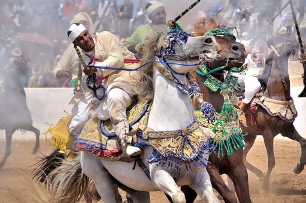 fantasia marrakech 2