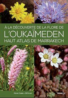 flore-oukaimeden