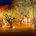 hotel du golf marrakech 19