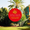 jardin anima marrakech 4