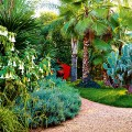 jardin anima marrakech 7