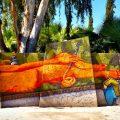 jardin rouge marrakech 3