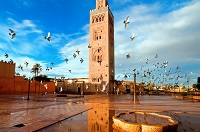 koutoubia marrakech 10