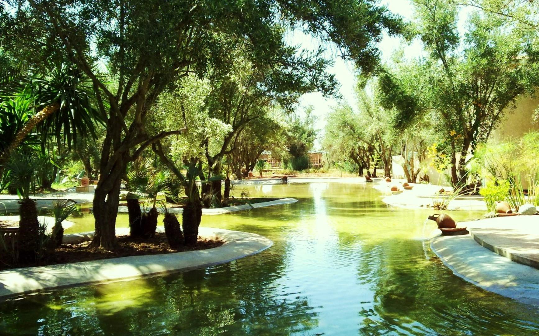 maison du jardin zen belle maison louer marrakech avec piscine. Black Bedroom Furniture Sets. Home Design Ideas