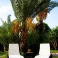 ocation villa marrakech Villa Ksar Beldi 01a