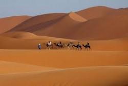 Merzouga Conciergerie Marrakech