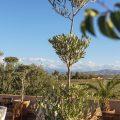 domaine feng shui villa marrakech