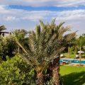 villa jardin berbere marrakech